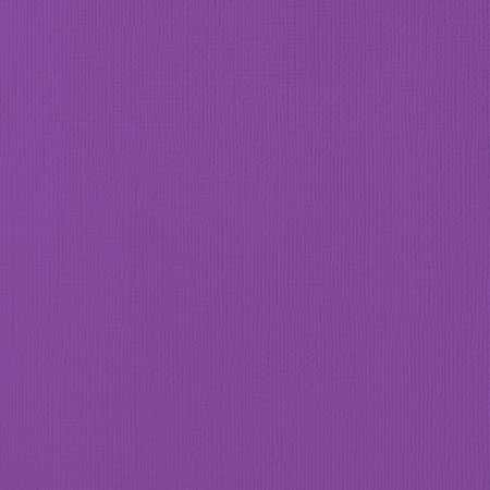 PAPIER CARDSTOCK GRAPE