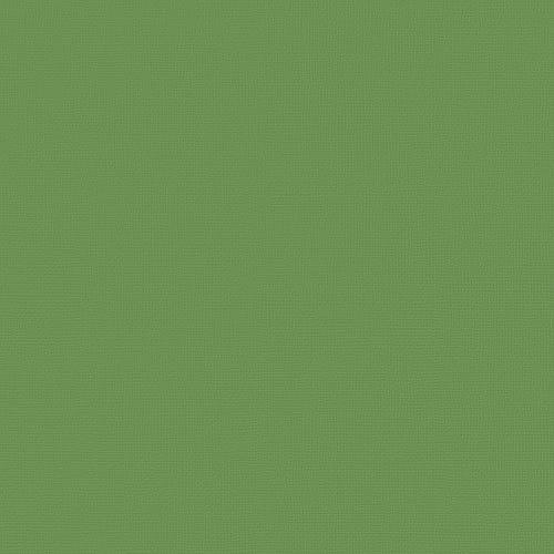 71733_12xCardstock_Wheatgrass