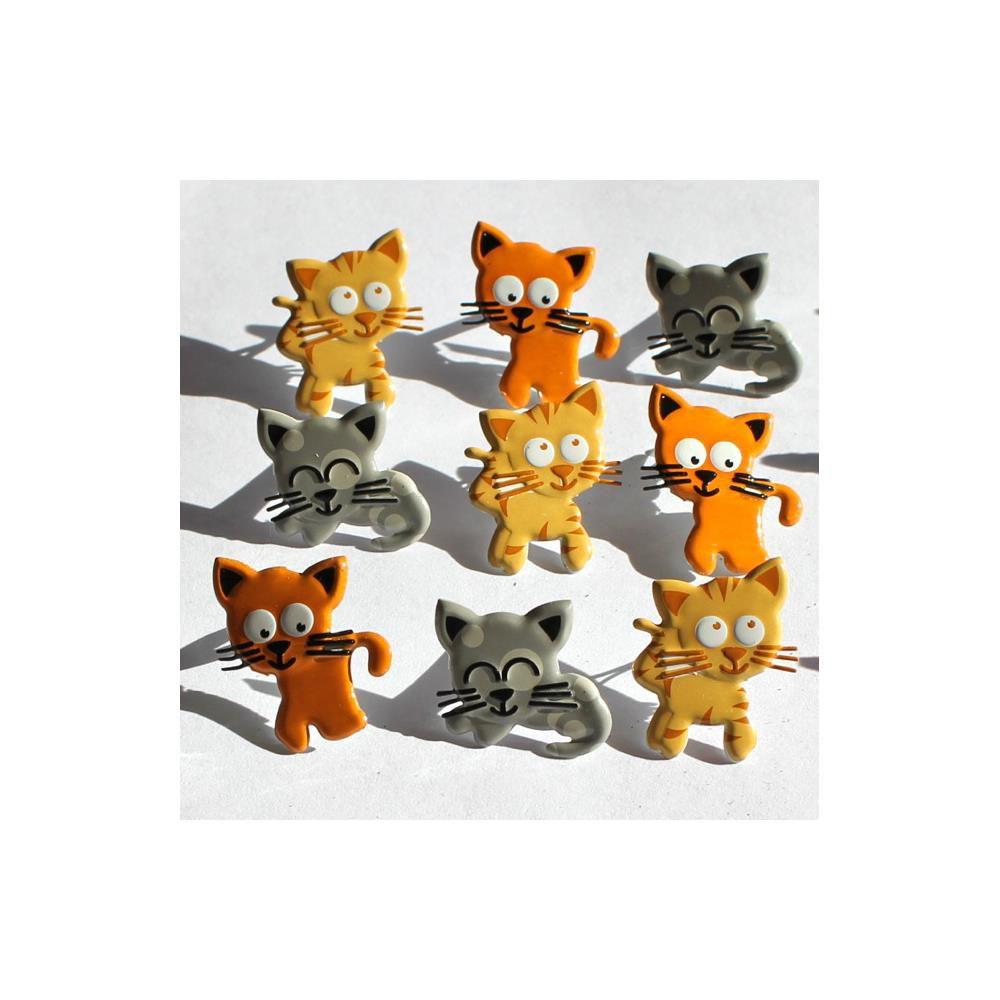 12 brads kitty
