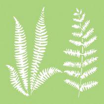 6 X 6 POCHOIR FEUILLES - Ferns