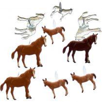 BRADS Horse
