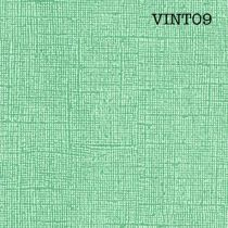 CARDSTOCK VINTAGE - Vert Menthe