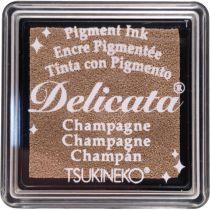 DELICATA ENCRE PIGMENTEE - Champagne