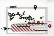carte virginie012