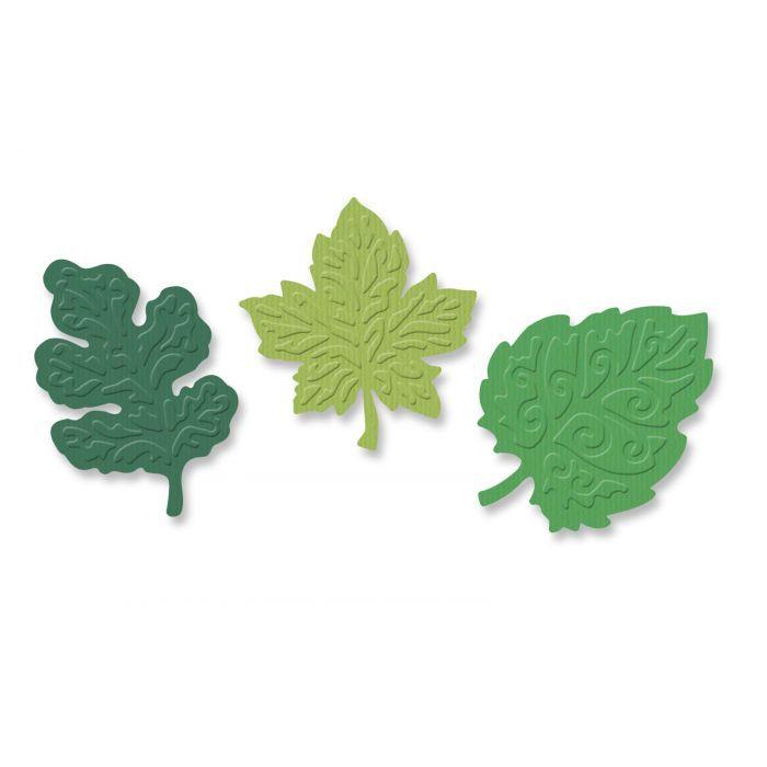 Die feuilles