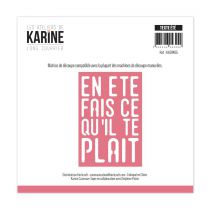 DIE LONG COURRIER - Texte Eté
