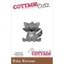 DIE RATON LAVEUR - Baby Raccoon