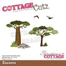 DIE Savanna - arbres de la savanne
