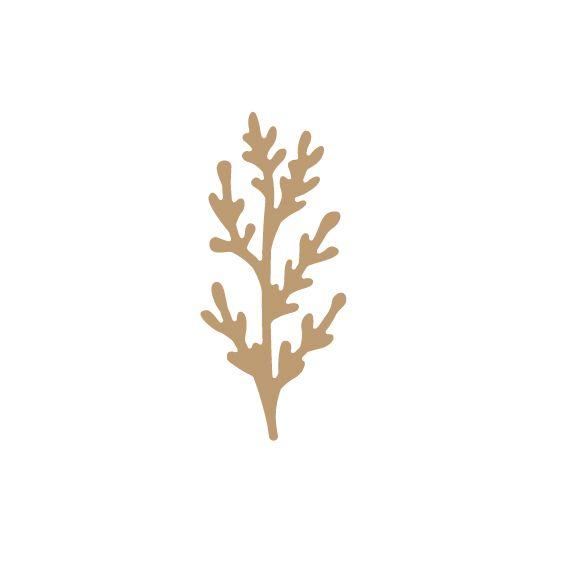 EMBELLISSEMENT BOIS PLANTE GRASSE 2