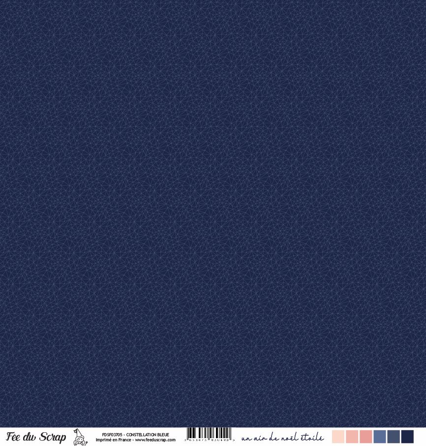 Feuille un air de noël étoilé - Constellation bleue