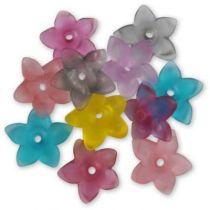PEP-3109-melange-fleur-5-petales