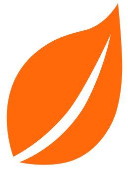 IZINK Nature Peinture Déco - Orange Safran