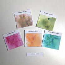 Lindy\'s Stamp Gang Magicals .25oz 5/Pkg - Hawaiian islands