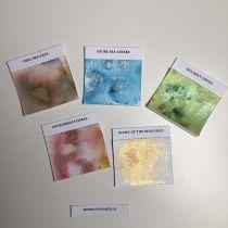 Lindy\'s Stamp Gang Magicals .25oz 5/Pkg - Mermaid seashells shimmer