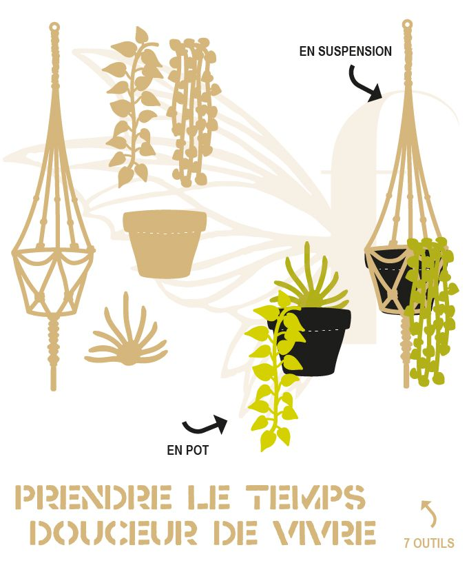 LOT DE 7 DIES PLANTES EN SUSPENSION