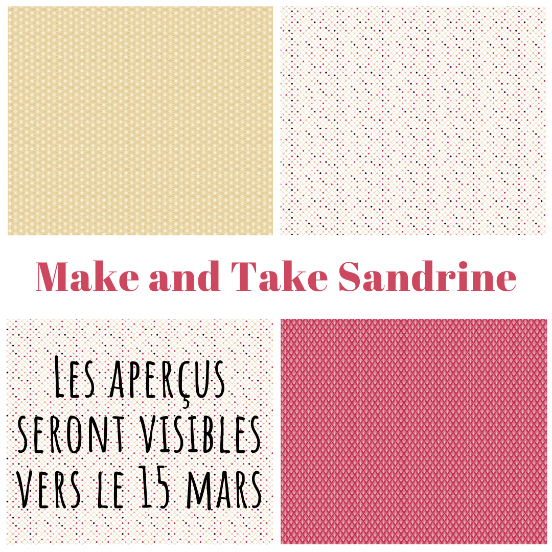 Mini atelier (Make and Take) 4 avril 10h45-11h45 mini album avec Sandrine