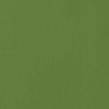 PAPIER CARDSTOCK SPINACH