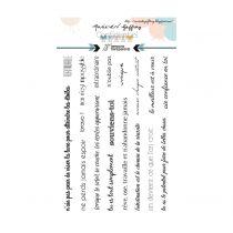 TAMPONS TRANSPARENTS - Confidentiel 2