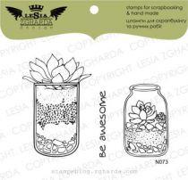 TAMPONS TRANSPARENTS - Set Floraruim in a Jar
