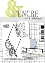 TAMPONS TRANSPARENTS A7 - Menthe Sauvage