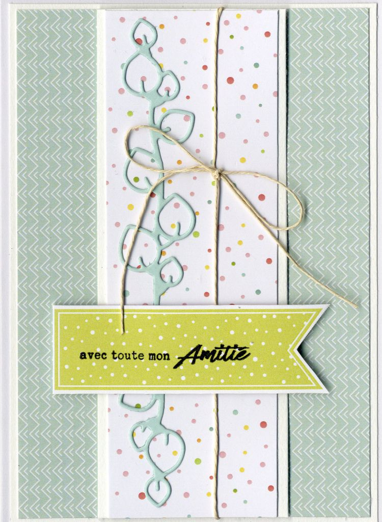 TAMPONS TRANSPARENTS CARTERIE AMITIE