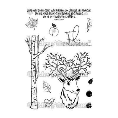 TAMPONS TRANSPARENTS SOUS-BOIS - Dans les Bois